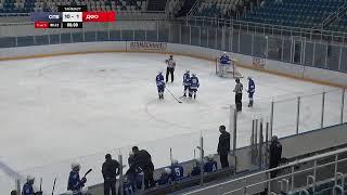 Смотреть видео Санкт-Петербург vs ДФО онлайн