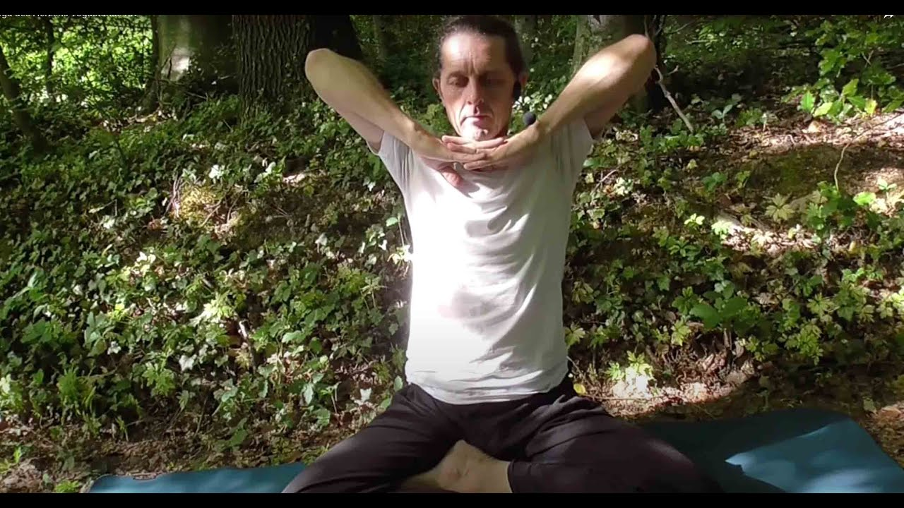 Yogastunden Videos Yoga Des Herzens Com