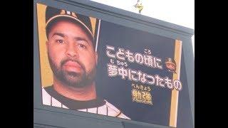 チャンネル登録お願いします> 2018年5月5日(土) T7-2D 阪神甲子...