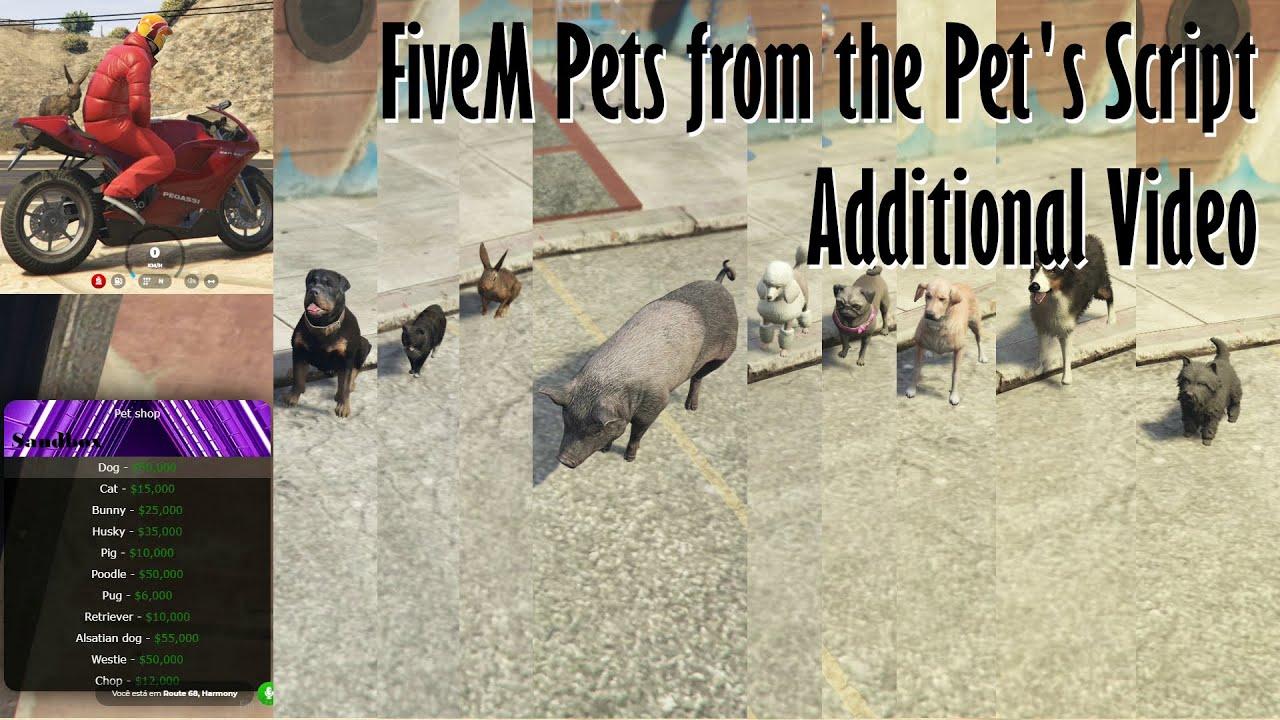 Gta V Fivem all Pets form the Pet's Script