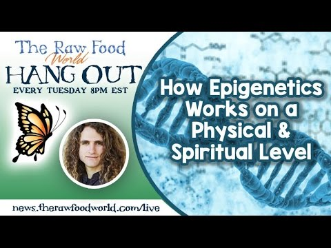Hangout: How Epigenetics Works on a Physical & Spiritual Lev