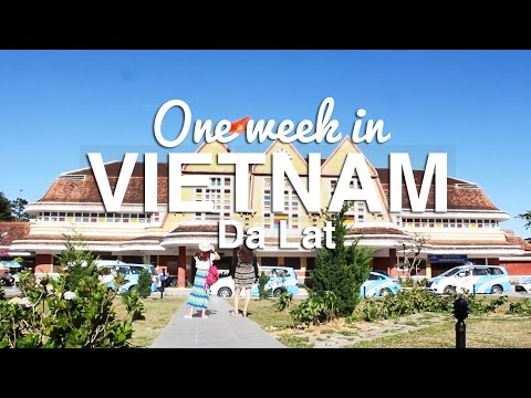 One Week in VIETNAM Part 1/2 ( Da Lat) | wynnysdiary