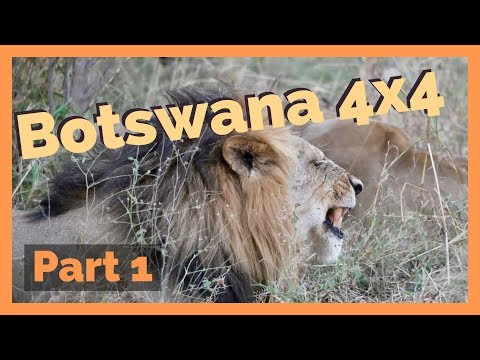 Botswana 4x4 - Part 1 (Kasane - Chobe - Savuti - Khwai)