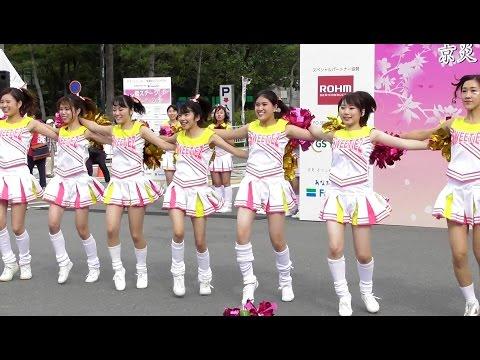 京都学生祭典2016 同志社大学チアダンスサークルSWEETiEZ Ⅰ