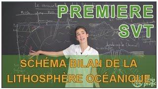 Schéma bilan de la lithosphère océanique - SVT - 1ère S - Les Bons Profs thumbnail
