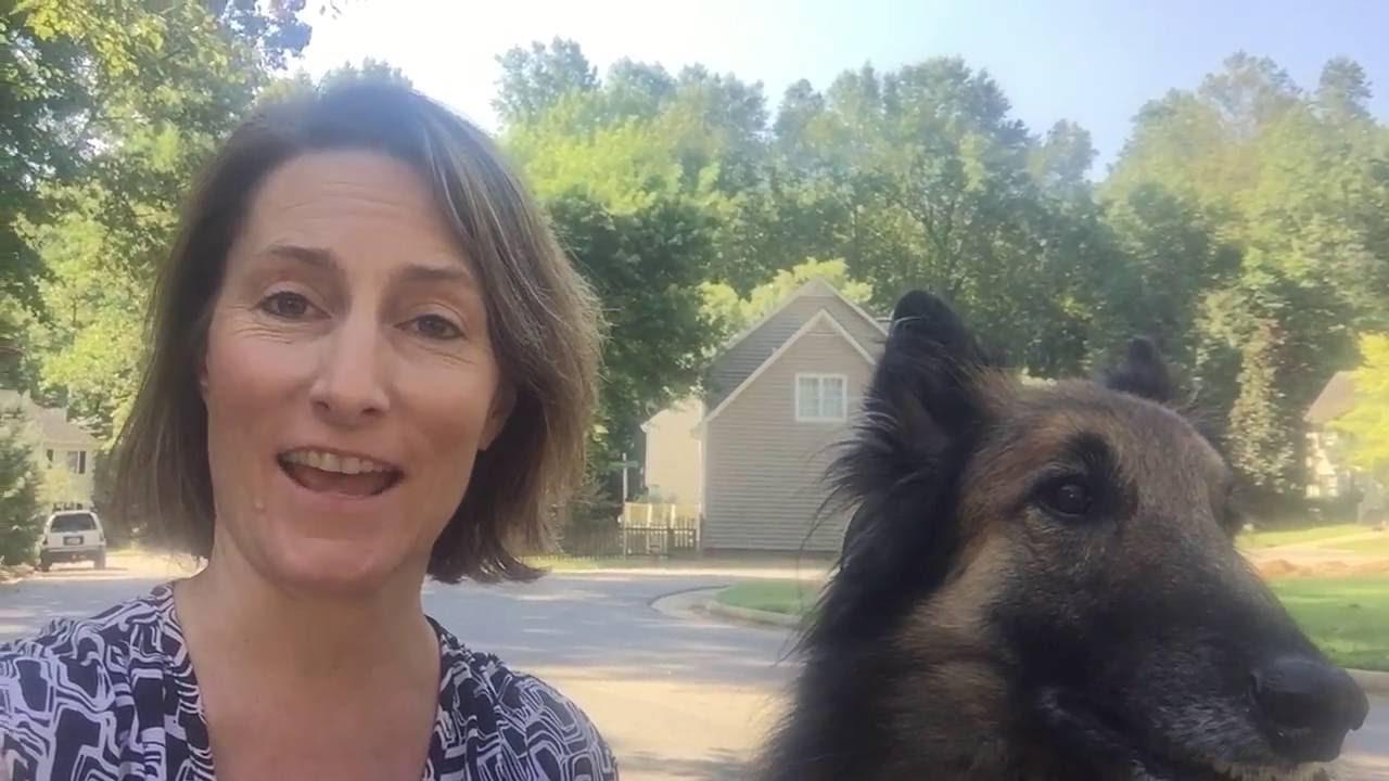 Door-to-door marketing with my dog - YouTube