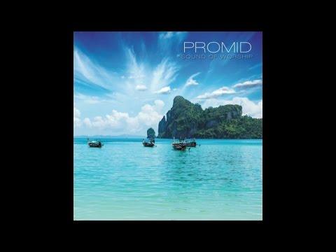 Promid - New Life