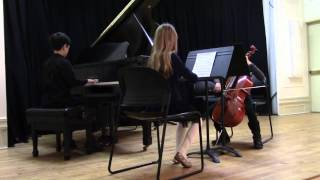 Ode To Joy recital at BCM - Julian Raheb with trio 1/31/2016