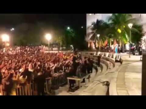 Marília Mendonça - Tô Sem Sal - Ao Vivo Fortaleza - Todos Os Cantos