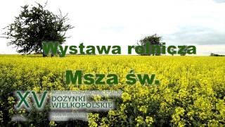 XV Dożynki Wielkopolskie