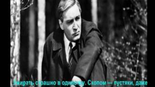 """Кадры и фразы с фильма""""17 мгновений весны"""""""