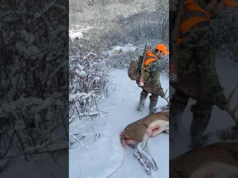 Funny deer hunting video !!!😂😂