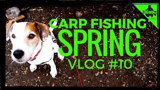 CARP FISHING IN SPRING - THE PARK LAKE - VLOG #10 😀