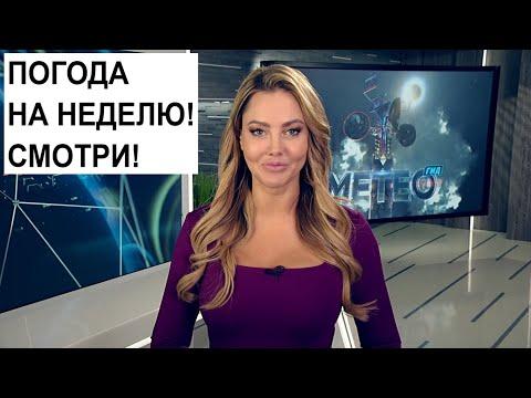 Погода на неделю 16 - 22 декабря 2019. Беларусь. Прогноз погоды | Метеогид
