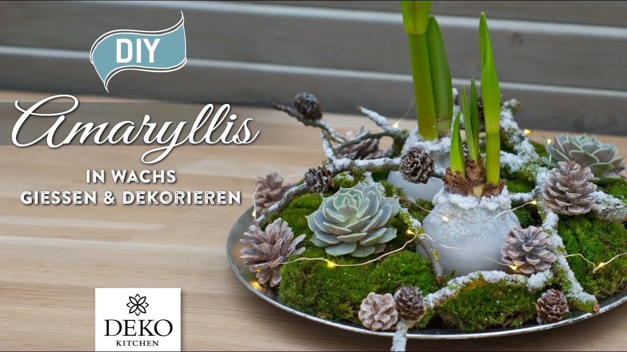 Diy weihnachtsdeko amaryllis in wachs gie en und dekorieren how to deko kitchen p youtube - Amaryllis dekorieren ...