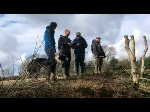 Mapping the New Forest's archaeology