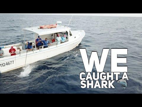 Charter Fishing In Jupiter Florida