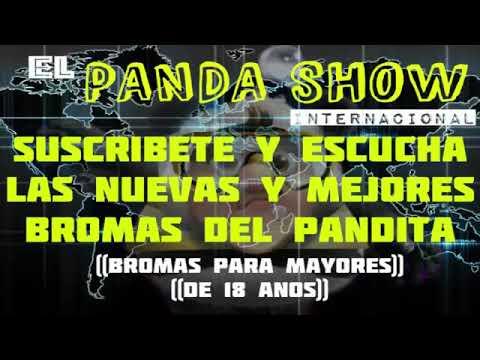 ¡¡PREPAREN EL DELAY CON LA RATERA POMPONA!! panda show internacional fans