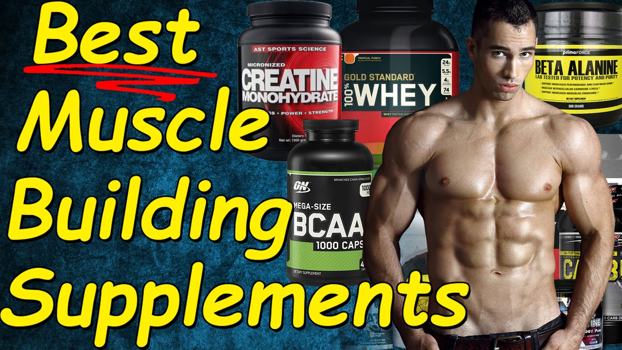 Image result for Why you need a special supplement for muscle building