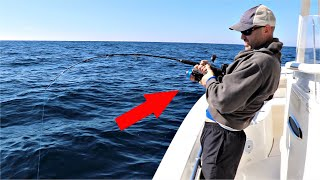 What Happens when you HOOK a HUGE GROUPER ?!