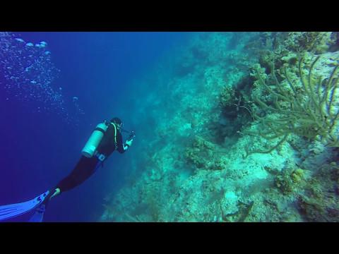 David Tucker Wreck Dive - Full Dive - Nassau Bahamas - May 9 2017