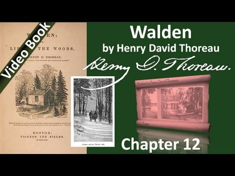 Chapter 12 - Walden by Henry David Thoreau - Brute Neighbors