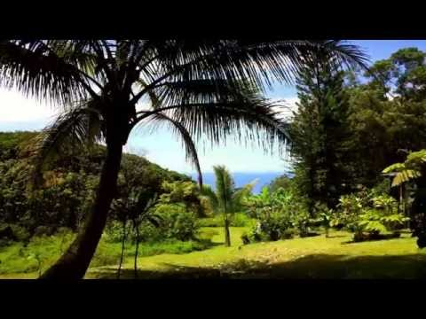 475 Hana Highway Property |  57 Acres in Beautiful Naiku