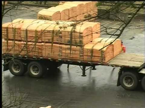 Vancouver Island's Lumber Industry Strong Despite Bleak US Outlook