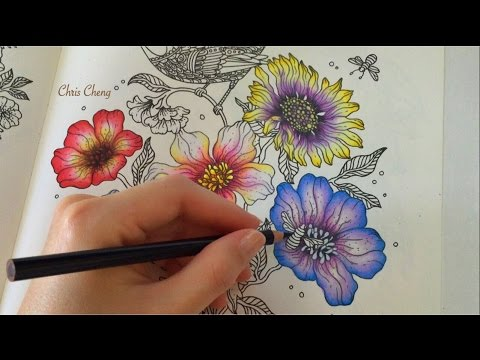 Spring Flower 5 Daydreams Coloring Book