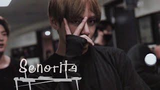 Download [FMV] Kim Taehyung - Senorita Mp3