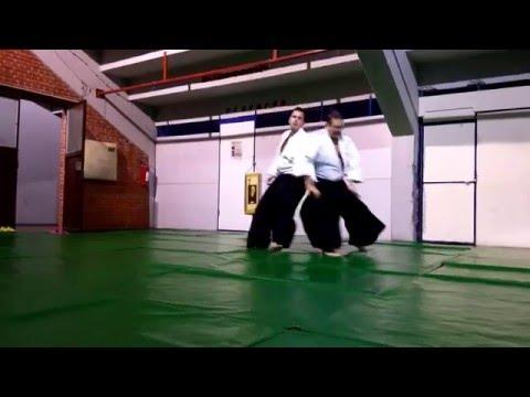 Sensei Novak Jerkov (5.DAN Aikikai Tokyo) - Shidoin - AIKIDO