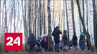 Парк в Путилкове облюбовали наркоманы - Россия 24