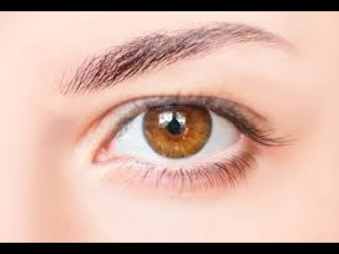 top 10 hazel eye facts - YouTube