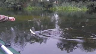 Риболовля з човна на р. Оскол.
