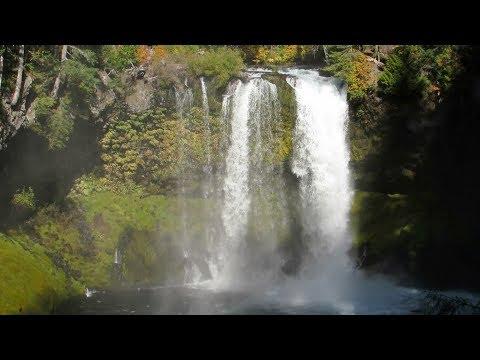 Virtual Hike: Dense Forest Riverside Waterfalls, 1 Hour, Actual Sound