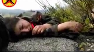 Repeat youtube video فيديو يوثق مقتل شبيحات ميليشيا المقاومة السورية في جبال اللاذقية