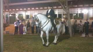 Novia bailando con el caballo unas sevillanas,Cartagena (Boda Mari Jose y Jose Pedro) (Murcia)