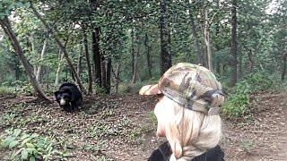 Sloth Bears Sanctuary