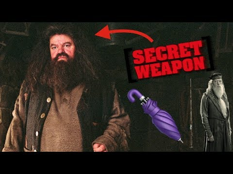 Harry Potter Theory: Was Hagrid Dumbledore's Secret Weapon?
