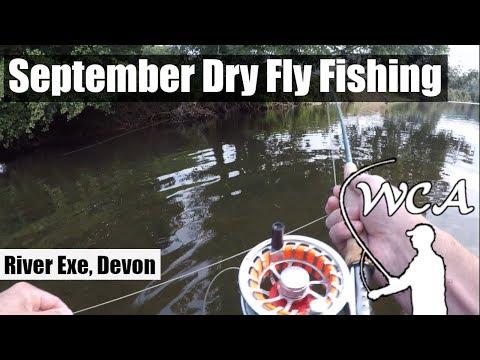 September Dry Fly Fishing In Devon, UK - River Exe