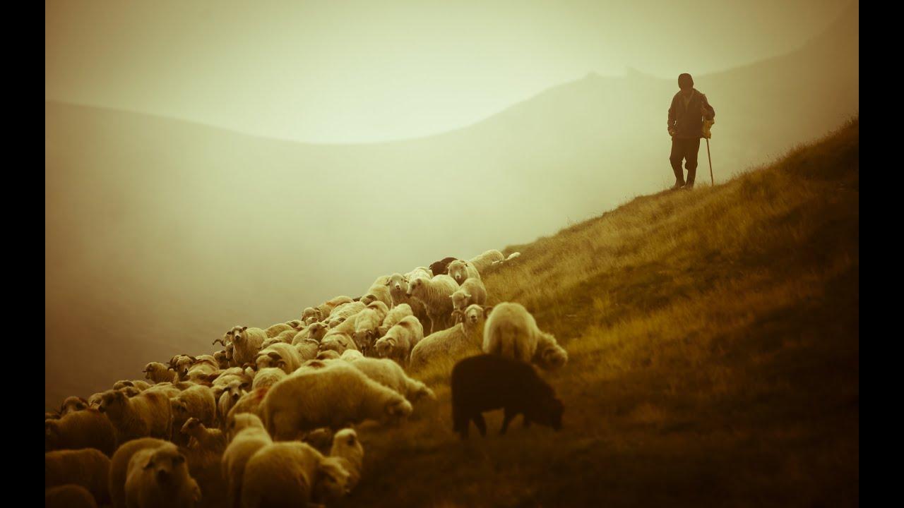 """Результат пошуку зображень за запитом """"пастир"""""""