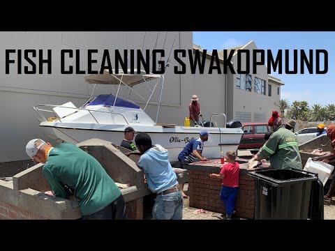 FISH CLEANING NEAR SWAKOPMUND AQUARIUM IN NAMIBIA | ЧИСТКА РЫБЫ ПОСЛЕ РЫБАЛКИ СВАКОПМУНД НАМИБИЯ