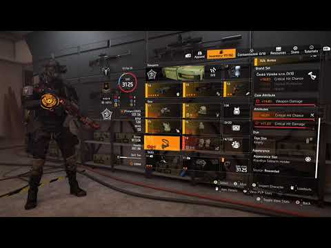 The Division 2 – Shepherd Assault Rifle Support build – BIG damage, team buffs and easy revives!