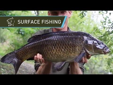 Surface Carp Fishing With Alan Blair LIVE BITES On Floaters - Nash Bait Soft Hookable Floaters