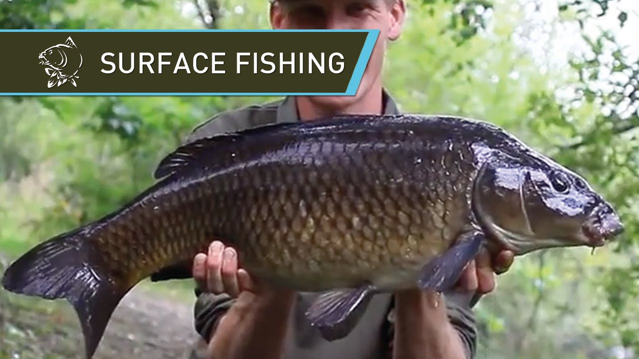 3 x slow sinking carp bubble floats carp fishing commercial fisheries