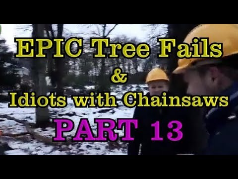 PART 13 - EPIC tree fails around the world compilation & IDIOTS with  chainsaws - Surffunny