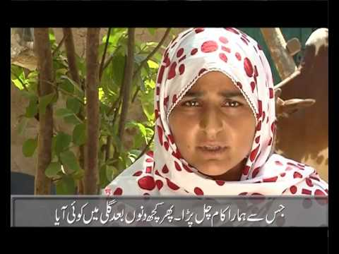 07 Murshida bibi Swabi Travel Video