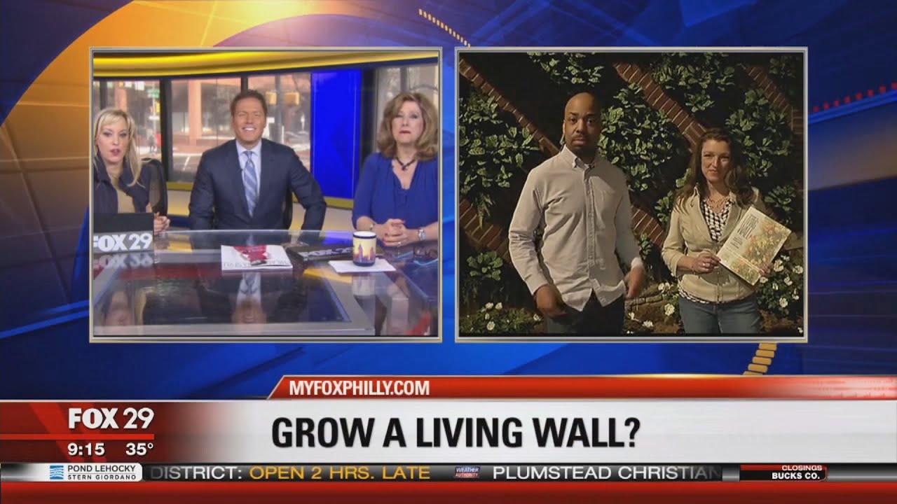 How To Grow A Living Wall TV News Appearance With Shawna Coronado