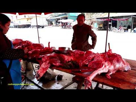 Thịt trâu đỉnh đèo Mã Phục tăng giá như thế nào? Khảo sát giá thịt trâu huyện ở Trà Lĩnh, Cao Bằng