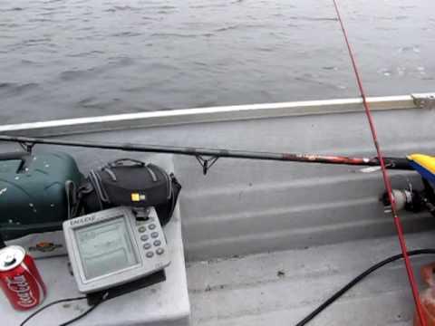 Pollack Fishing